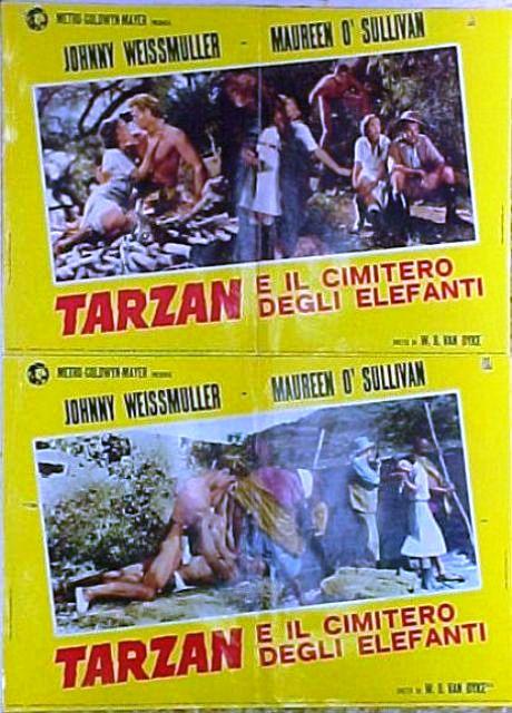 Tarzan e il cimitero degli elefanti