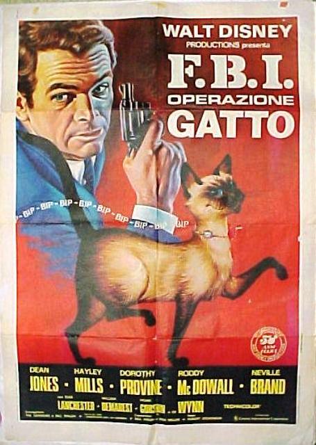 fbi operazione gatto 2