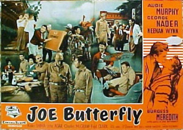 joe butterfly 2